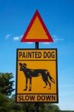 Africa;African-hunting-dog;African-hunting-dogs;African-wild-dog;African-wild-dogs;Cape-hunting-dog;Cape-hunting-dogs;game-park;game-parks;game-reserve;game-reserves;Hwange-N.P.;Hwange-National-Park;Hwange-NP;Lycaon-pictus;national-park;national-parks;ornate-wolf;ornate-wolfs;painted-dog;painted-dog-warning-sign;painted-dog-warning-signs;painted-dogs;painted-hunting-dog;painted-hunting-dogs;painted-wolf;painted-wolfs;road-sign;road-signs;road-warning-sign;road-warning-signs;sign;signs;Southern-Africa;spotted-dog;spotted-dogs;Wankie-Game-Reserve;warning-sign;warning-signs;wild-dog-warning-sign;wild-dog-warning-signs;wildlife-park;wildlife-parks;wildlife-reserve;wildlife-reserves;wildlife-sign;wildlife-signs;Zimbabwe