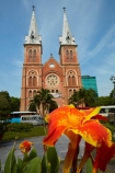 architecture;Asia;Asian;Basilica-of-Saigon;bell-tower;bell-towers;building;buildings;built-1863-_-1880;Cathedral;Cathedral-Basilica-of-Our-Lady-of-The-Immaculate-Conception;Cathedrals;christian;christianity;church;churches;cities;city;District-1;District-One;faith;floral;flower;flowers;French-Colonial;H.C.M.-City;H-Chí-Minh;HCM;HCM-City;heritage;historic;historic-building;historic-buildings;historical;historical-building;historical-buildings;history;Ho-Chi-Minh;Ho-Chi-Minh-City;Notre-Dame-Cathedral;Notre-Dame-Cathedral-Basilica-of-Saigon;Notre_Dame-Cathedral;Notre_Dame-Cathedral-Basilica-of-Saigon;old;place-of-worship;places-of-worship;religion;religions;religious;Saigon;South-East-Asia;Southeast-Asia;spire;spires;tradition;traditional;Vietnam;Vietnamese