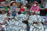 Asian;Asian-conical-hat;Asian-conical-hats;commerce;commercial;conical-hat;conical-hats;Dong-Ba-Market;female;fish;fish-stall;fresh-fish;Hu;Hue;leaf-hat;leaf-hats;market;market-place;market-stall;market-stalls;market_place;marketplace;marketplaces;markets;non-la;North-Central-Coast;nón-lá;palm_leaf-conical-hat;people;person;retail;retailer;retailers;seafood;shop;shopping;shops;stall;stalls;street-scene;street-scenes;Tha-Thiên_Hu-Province;Thua-Thien_Hue-Province;Vietnam;Vietnamese;Vietnamese-conical-hat;Vietnamese-conical-hats;Vietnamese-hat;Vietnamese-hats;Vietnamese-symbol;woman;women;Asia