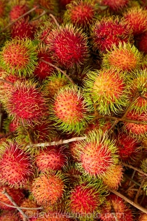 Asia;Asian;Can-Duoc;Can-Duoc-Market;chom-chom;chomchom;colorful;colour;colourful;commerce;commercial;exotic-fruit;exotic-fruits;farmer-market;farmer-markets;farmers-market;farmers-markets;farmers-market;farmers-markets;food;food-market;food-markets;food-stall;food-stalls;fruit;fruit-and-vegetables;fruit-market;fruit-markets;gathering;hairy-fruit;Long-An-Province,;market;market-day;market-days;market-place;market_place;marketplace;markets;Mekong-Delta;Mekong-Delta-Region;Nephelium-lappaceum;produce;produce-market;produce-markets;product;products;rambutan;rambutan-fruit;rambutan-fruits;red;retail;retailer;retailers;Sapindaceae;shop;shopping;shops;South-East-Asia;Southeast-Asia;stall;stalls;steet-scene;street-scenes;tropical-fruit;tropical-fruits;unusual;unusual-fruit;unusual-fruits;Vietnam;Vietnamese