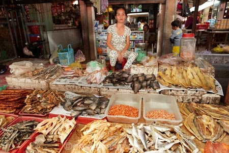 Asia;Asian;Can-Duoc;Can-Duoc-Market;commerce;commercial;dried-fish;farmer-market;farmer-markets;farmers-market;farmers-markets;farmers-market;farmers-markets;female;females;fish;food-market;food-markets;food-stall;food-stalls;lady;Long-An-Province,;market;market-day;market-days;market-place;market_place;marketplace;markets;Mekong-Delta;Mekong-Delta-Region;people;person;produce;produce-market;produce-markets;retail;retailer;retailers;seafood;shop;shopping;shops;South-East-Asia;Southeast-Asia;stall;stalls;steet-scene;street-scenes;Vietnam;Vietnamese;woman;women;worker;workers