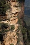 Australia;Blue-Mountains;Blue-Mountains-N.P.;Blue-Mountains-National-Park;Blue-Mountains-NP;bluff;bluffs;cliff;cliffs;escarpment;escarpments;mountainside;mountainsides;N.S.W.;National-Pass-Track;National-Pass-Trail;New-South-Wales;NSW;steep;trail;trails;UN-world-heritage-site;UNESCO-World-Heritage-Site;united-nations-world-heritage-site;walking-trail;walking-trails;Wentworth-Falls;world-heritage;world-heritage-area;world-heritage-areas;World-Heritage-Park;World-Heritage-site;World-Heritage-Sites