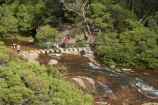 Australia;Blue-Mountains;Blue-Mountains-N.P.;Blue-Mountains-National-Park;Blue-Mountains-NP;cascade;cascades;creek;creeks;falls;hike;hiker;hikers;hiking;N.S.W.;National-Pass-Track;National-Pass-Trail;natural;nature;New-South-Wales;NSW;people;person;scene;scenic;stream;streams;tourists;trail;trails;tramp;tramper;trampers;tramping;trek;treker;trekers;treking;trekker;trekkers;trekking;UN-world-heritage-site;UNESCO-World-Heritage-Site;united-nations-world-heritage-site;walk;walker;walkers;walking;walking-trail;walking-trails;water;water-fall;water-falls;waterfall;waterfalls;Wentworth-falls;wet;world-heritage;world-heritage-area;world-heritage-areas;World-Heritage-Park;World-Heritage-site;World-Heritage-Sites