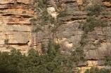 Australia;Blue-Mountains;Blue-Mountains-N.P.;Blue-Mountains-National-Park;Blue-Mountains-NP;bluff;bluffs;cliff;cliff-face;cliffs;escarpment;escarpments;hiking-track;hiking-tracks;mountainside;mountainsides;N.S.W.;National-Pass-Track;National-Pass-Trail;New-South-Wales;NSW;steep;track;tracks;trail;trails;UN-world-heritage-site;UNESCO-World-Heritage-Site;united-nations-world-heritage-site;walking-track;walking-tracks;walking-trail;walking-trails;Wentworth-Falls;world-heritage;world-heritage-area;world-heritage-areas;World-Heritage-Park;World-Heritage-site;World-Heritage-Sites