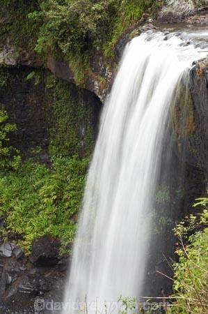 Atherton-Tableland;Atherton-Tablelands;Australasian;Australia;Australian;cascade;cascades;creek;creeks;falls;Millaa-Millaa;natural;nature;North-Queensland;Qld;Queensland;scene;scenic;stream;streams;tropical-rainforest;tropical-rainforests;water;water-fall;water-falls;waterfall;waterfalls;wet;Zillie-Falls;Zillie-Waterfall;Zillie-Waterfalls