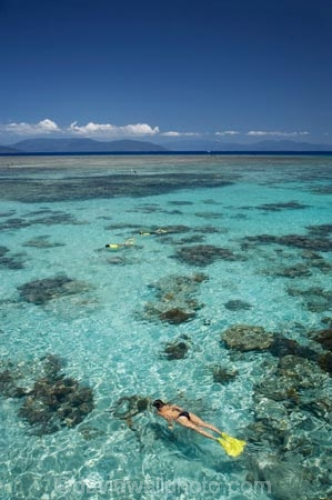australasian;Australia;australian;Barrier-Reef;bikini;bikinis;cairns;cay;cays;coast;coastal;coastline;coastlines;coasts;coral-cay;coral-cays;coral-reef;coral-reefs;Coral-Sea;dive-site;dive-sites;diver;divers;Ecosystem;Environment;girl;girls;Great-Barrier-Reef;Great-Barrier-Reef-Marine-Park;Green-Is;Green-Is-NP;Green-Is.;green-island;Green-Island-N.P.;Green-Island-National-Park;Green-Island-NP;Green-Island-Resort;holiday;holiday-destination;holiday-destinations;holidaying;Holidays;marine-environment;North-Queensland;ocean;oceans;people;person;persons;Qld;queensland;reef;reefs;sand-cay;sand-cays;sea;seas;shore;shoreline;shorelines;Shores;snorkel;snorkeler;snorkelers;snorkeling;south-pacific;swim;swimmer;swimmers;swimming;tasman-sea;tourism;tourist;tourists;travel;traveler;traveling;traveller;travelling;Tropcial-North-Queensland;tropical;tropical-reef;tropical-reefs;UNESCO-World-Heritage-Site;vacation;vacationers;vacationing;vacations;water;Wiorld-Heritage-Site;woman;women;world-heritage-area;World-Heritage-Park;world-heritage-site