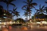 Australasian;Australia;Australian;Cairns;dusk;evening;nightfall;North-Queensland;palm;palm-tree;palm-trees;palms;Qld;Queensland;The-Esplanade;Tropical-North-Queensland;twilight