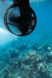 australasian;Australia;australian;Barrier-Reef;cairns;cay;cays;coast;coastal;coastline;coastlines;coasts;coral-cay;coral-cays;coral-reef;coral-reefs;Coral-Sea;dive-site;dive-sites;Ecosystem;Environment;fish;fishes;Glass-Bottomed-Boat;Glass-Bottomed-Boats;Glass_Bottomed-Boat;Glass_Bottomed-Boats;Great-Barrier-Reef;Great-Barrier-Reef-Marine-Park;Green-Is;Green-Is-NP;Green-Is.;green-island;Green-Island-N.P.;Green-Island-National-Park;Green-Island-NP;Green-Island-Resort;holiday;holiday-destination;holiday-destinations;Holidays;marine-environment;North-Queensland;ocean;oceans;propeller;propellers;Propellor;Propellors;Qld;queensland;reef;reefs;sand-cay;sand-cays;sea;seas;Semi-Sub;Semi-Submarine;Semi-Submarines;Semi-Subs;Semi_Sub;Semi_Submarine;Semi_Submarines;Semi_Subs;SemiSub;SemiSubmarine;SemiSubmarines;SemiSubs;shore;shoreline;shorelines;Shores;south-pacific;tasman-sea;tourism;travel;Tropcial-North-Queensland;tropical;tropical-reef;tropical-reefs;underwater;underwater-photo;underwater-photography;underwater-photos;UNESCO-World-Heritage-Site;Vacation;Vacations;water;Wiorld-Heritage-Site;world-heritage-area;World-Heritage-Park;world-heritage-site