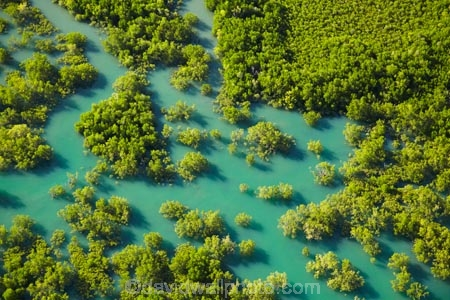 aerial;aerial-image;aerial-images;aerial-photo;aerial-photograph;aerial-photographs;aerial-photography;aerial-photos;aerial-view;aerial-views;aerials;Australasian;Australia;Australian;Bleesers-Creek;Charles-Darwin-N.P.;Charles-Darwin-National-Park;Charles-Darwin-NP;Darwin;estuaries;estuary;inlet;inlets;lagoon;lagoons;mangrove;mangrove-swamp;mangrove-swamps;mangroves;N.T.;National-Parks;Northern-Territory;NT;tidal;tide;Top-End;water