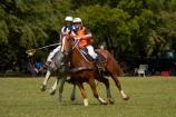 Australasian;Australia;Australian;Darwin;equestrian;fair;fairs;Freds-Pass-Rural-Show;horse;horses;N.T.;Northern-Territory;NT;people;person;polo-cross;polocross;polocross-rider;polocross-riders;polocrosse;polocrosse-rider;polocrosse-riders;rural-show;rural-shows;show;shows;sport;sports;Top-End