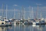 australasia;Australia;australian;boat;boat-harbour;boats;calm;catamaran;catamarans;coast;coastal;fishing-boat;fishing-boats;Fraser-Coast;harbor;harbors;harbours;Hervey-Bay;jetties;jetty;marina;marinas;mast;masts;pier;piers;queensland;reflect;reflection;reflections;Urangan;wharfs;wharves;yacht;yachts