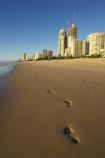 accommodation;apartment;apartments;australasia;Australia;beach;beaches;coast;coastal;early-light;foot-print;foot-prints;foot-step;foot-steps;footprint;footprints;footstep;footsteps;Gold-Coast;high-rise;high-rises;high_rise;high_rises;highrise;highrises;holiday;holidays;hotel;hotels;queensland;reflection;reflections;sand;sandy;sky-scraper;sky-scrapers;sky_scraper;sky_scrapers;skyscraper;skyscrapers;surfers-paradise;tourism;travel;vacation;vacations;wet