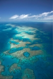aerial;aerial-photo;aerial-photograph;aerial-photographs;aerial-photography;aerial-photos;aerial-view;aerial-views;aerials;australasian;Australia;australian;Barrier-Reef;blue;coral-reef;coral-reefs;Coral-Sea;dive-site;dive-sites;Ecosystem;Environment;Great-Barrier-Reef;Great-Barrier-Reef-Marine-Park;marine-environment;North-Queensland;ocean;oceans;pattern;patterns;Qld;queensland;reef;reefs;sea;seas;south-pacific;tasman-sea;Tongue-Reef;Tropcial-North-Queensland;tropical;tropical-reef;tropical-reefs;turquoise;UNESCO-World-Heritage-Site;world-heritage-area;World-Heritage-Park;world-heritage-site