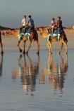Australasian;Australia;Australian;beach;beaches;Broome;calm;camel;camel-train;camel-trains;camels;coast;coastal;coastline;Kimberley;Kimberley-Region;placid;quiet;reflection;reflections;sand;sandy;serene;shore;shoreline;smooth;still;The-Kimberley;tourism;tourist;tourist-attraction;tourist-attractions;tourists;tranquil;W.A.;WA;water;West-Australia;Western-Australia