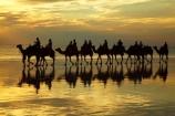 Australasian;Australia;Australian;beach;beaches;Broome;Cable-Beach;calm;camel;camel-train;camel-trains;camels;cloud;clouds;coast;coastal;coastline;dusk;evening;icon;iconic;icons;Kimberley;Kimberley-Region;last-light;late-light;nightfall;orange;placid;quiet;reflection;reflections;sand;sandy;serene;shore;shoreline;silhouette;silhouettes;sky;smooth;still;sunset;sunsets;The-Kimberley;tourism;tourist;tourist-attraction;tourist-attractions;tourists;tranquil;twilight;W.A.;WA;water;West-Australia;Western-Australia