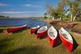 Australasian;Australia;Australian;boat;boats;Camp;Camp-Ground;Camp-Grounds;Camp-Site;Camp-Sites;Camping;Camping-Area;Camping-Areas;Camping-Ground;Camping-Grounds;Camping-Site;Camping-Sites;Canadian-canoe;Canadian-canoes;canoe;canoeing;canoes;Caravan-Park;Caravan-Parks;eucalypt;eucalypts;eucalyptus;eucalytis;gum;gum-tree;gum-trees;gums;Holiday;Holiday-Park;Holiday-Parks;holidays;Kimberley;Kimberley-Region;Kimberleyland-Holiday-Park;Kununurra;lagoon;lagoons;lake;Lake-Kununurra;lakes;Lily-Creek-Lagoon;Lily-Lagoon;The-Kimberley;tree;trees;vacation;vacations;W.A.;WA;West-Australia;Western-Australia