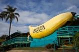 australasia;Australasian;Australia;australian;banana;bananas;big;Big-Banana;big-fruit;Coffs-Harbor;Coffs-Harbour;Coffs-Harbor;Coffs-Harbour;fruit;fruits;giant;huge;icon;icons;Mid-North-Coast;Mid-North-Coast-NSW;Mid-North-Nsw;Mid-Northern-NSW;N.S.W.;New-South-Wales;NSW;tacky;The-Big-Banana;tropical