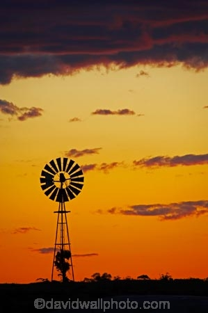 agricultural;agriculture;arid;Australasia;Australasian;Australia;Australian;Australian-Desert;Australian-Deserts;Australian-Outback;back-country;backcountry;backwoods;bore-pump;bore-pumps;borepump;borepumps;country;countryside;desert;Deserts;dry;dusk;dusty;evening;farm;farming;farmland;farms;geography;Mungo-N.P.;Mungo-National-Park;Mungo-NP;N.S.W.;New-South-Wales;night;night-time;nightfall;NSW;orange;outback;red-centre;remote;remoteness;rural;sand;silhouette;silhouettes;sky;sun;sunset;sunsets;twilight;wilderness;wind;wind-mill;wind-mills;wind_mill;wind_mills;windmill;windmills;windy