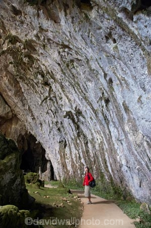 australasia;Australasian;Australia;australian;beach;beaches;cave;cavern;caverns;cavers;caves;caving;explore;exploring;grotto;grottos;Kosciuszko-N.P.;Kosciuszko-National-Park;Kosciuszko-NP;Limestone-Formations;N.S.W.;New-South-Wales;NSW;people;person;sand;scenic;Snowy-Mountains;Snowy-Mountains-Drive;Snowy-Mountains-Highway;Snowy-Mountains,;South-Glory-Cave;South-New-South-Wales;Southern-New-South-Wales;Yarrangobilly-Cave;Yarrangobilly-Caves