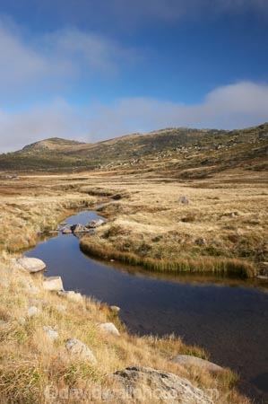 alpine;australasia;Australasian;Australia;australian;Betts-Creek;brook;brooks;creek;creeks;flow;Kosciuszko-N.P.;Kosciuszko-National-Park;Kosciuszko-NP;Kosciuszko-Rd;Kosciuszko-Road;mountain-stream;mountain-streams;mountains;N.S.W.;New-South-Wales;NSW;Snowy-Mountains;South-New-South-Wales;Southern-New-South-Wales;stream;streams;Summit-Rd;Summit-Road;valley;valleys;water;wet