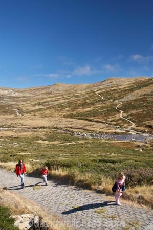 alpine;Australia;brook;brooks;creek;creeks;flow;Great-Dividing-Range;hike;hiker;hikers;hiking;hiking-track;hiking-tracks;Kosciuszko-N.P.;Kosciuszko-National-Park;Kosciuszko-NP;Main-Range-Track;mountains;N.S.W.;New-South-Wales;NSW;people;person;Snowy-Mountains;Snowy-River;South-New-South-Wales;Southern-New-South-Wales;stream;streams;track;tracks;tramp;tramper;trampers;tramping;trek;treker;trekers;treking;trekker;trekkers;trekking;valley;valleys;walk;walker;walkers;walking;walking-track;walking-tracks;water;wet