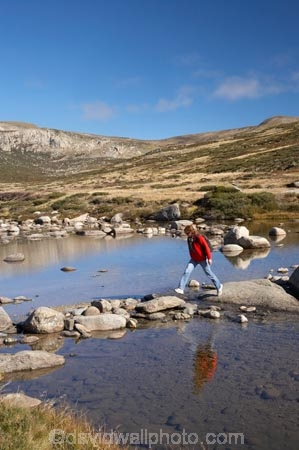 alpine;Australia;boulder;boulders;brook;brooks;calm;creek;creeks;crossing;flow;Great-Dividing-Range;hike;hiker;hikers;hiking;Kosciuszko-N.P.;Kosciuszko-National-Park;Kosciuszko-NP;Main-Range-Track;mountain-stream;mountain-streams;mountains;N.S.W.;New-South-Wales;NSW;people;person;placid;quiet;reflection;reflections;rock;rocks;rocky;serene;smooth;Snowy-Mountains;Snowy-River;South-New-South-Wales;Southern-New-South-Wales;stepping-stones;still;stream;streams;tramp;tramper;trampers;tramping;tranquil;trek;treker;trekers;treking;trekker;trekkers;trekking;valley;valleys;walk;walker;walkers;walking;water;wet