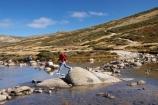 alpine;Australia;boulder;boulders;brook;brooks;creek;creeks;crossing;flow;Great-Dividing-Range;hike;hiker;hikers;hiking;Kosciuszko-N.P.;Kosciuszko-National-Park;Kosciuszko-NP;Main-Range-Track;mountain-stream;mountain-streams;mountains;N.S.W.;New-South-Wales;NSW;people;person;rock;rocks;rocky;Snowy-Mountains;Snowy-River;South-New-South-Wales;Southern-New-South-Wales;stepping-stones;stream;streams;tramp;tramper;trampers;tramping;trek;treker;trekers;treking;trekker;trekkers;trekking;valley;valleys;walk;walker;walkers;walking;water;wet