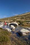 alpine;Australia;boulder;boulders;boy;boys;brook;brooks;child;children;creek;creeks;flow;Great-Dividing-Range;Kosciuszko-N.P.;Kosciuszko-National-Park;Kosciuszko-NP;Main-Range-Track;mountain-stream;mountain-streams;mountains;N.S.W.;New-South-Wales;NSW;people;person;rock;rocks;rocky;Snowy-Mountains;Snowy-River;South-New-South-Wales;Southern-New-South-Wales;stream;streams;valley;valleys;water;wet