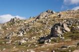 alpine;Australia;geological;geology;Kosciuszko-N.P.;Kosciuszko-National-Park;Kosciuszko-NP;Kosciuszko-Walk;mountains;N.S.W.;New-South-Wales;North-Rams-Head;NSW;Rams-Head-Range;rock;rock-formation;rock-formations;rock-outcrop;Rock-Outcrops;rock-tor;rock-torr;rock-torrs;rock-tors;rocks;Snowy-Mountains;Snowy-Mountains-Drive;South-New-South-Wales;Southern-New-South-Wales;stone
