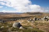 alpine;Australia;geological;geology;Kosciuszko-Lookout;Kosciuszko-N.P.;Kosciuszko-National-Park;Kosciuszko-NP;Kosciuszko-Walk;mountains;N.S.W.;New-South-Wales;NSW;Rams-Head-Range;rock;rock-formation;rock-formations;rock-outcrop;rock-outcrops;rock-tor;rock-torr;rock-torrs;rock-tors;rocks;Snowy-Mountains;Snowy-Mountains-Drive;Snowy-River-Valley;South-New-South-Wales;Southern-New-South-Wales;stone