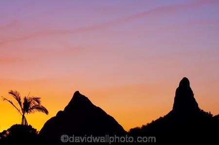 australasia;Australia;australian;dusk;Glass-House-Mountains;Glass-House-Mountains-National;Hinterland;mountain;mountains;natural;nature;orange;palm;palm-tree;palm-trees;palms;Queensland;silhouette;silhouettes;sunset;sunsets;sunshine-coast;twilight;volcanic-plug;volcanic-plugs