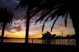 architectural;architecture;Australasia;Australia;Bennelong-Point;break-of-day;dawn;dawning;daybreak;first-light;globe;globes;icon;iconic;icons;lamp;lamps;landmark;landmarks;morning;N.S.W.;New-South-Wales;NSW;Opera-House;orange;palm-tree;palm-trees;silhouette;silhouettes;sky;street-lamp;street-lamps;street-light;street-lighting;street-lights;sunrise;sunrises;sunup;Sydney;Sydney-Cove;Sydney-Harbor;Sydney-Harbour;Sydney-Opera-House;twilight