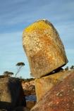 algae;Australasian;Australia;Australian;Bay-of-Fires;Binalong-Bay;coast;coastal;coastline;coastlines;coasts;East-Tasmania;Eastern-Tasmania;foreshore;fungi;geological;geology;Island-of-Tasmania;lichens;ocean;orange;orange-lichen;orange-lichens;orange-rock;orange-rock-lichen;orange-rock-lichens;orange-rocks;rock;rock-formation;rock-formations;rock-outcrop;rock-outcrops;rock-tor;rock-torr;rock-torrs;rock-tors;rocks;sea;shore;shoreline;shorelines;shores;State-of-Tasmania;stone;Tas;Tasmania;water