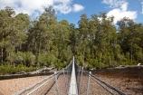 Australasian;Australia;Australian;beautiful;beauty;bridge;bridges;bush;endemic;foot-bridge;foot-bridges;footbridge;footbridges;forest;Forestry-Tasmania;forests;green;hiking-track;hiking-tracks;Huon-River;Huon-Suspension-Bridge;Huon-Swing-Bridge;Huon-Swinging-Bridge;Island-of-Tasmania;native;native-bush;natural;nature;pedestrian-bridge;pedestrian-bridges;scene;scenic;State-of-Tasmania;suspension-bridge;suspension-bridges;swing-bridge;swing-bridges;Tahune-Forest-Reserve;Tas;Tasmania;track;tracks;tree;trees;walking-track;walking-tracks;wire-bridge;wire-bridges;wood;woods