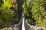 Australasian;Australia;Australian;beautiful;beauty;bridge;bridges;bush;endemic;foot-bridge;foot-bridges;footbridge;footbridges;forest;Forestry-Tasmania;forests;green;hiker;hikers;hiking-track;hiking-tracks;Huon-River;Huon-Suspension-Bridge;Huon-Swing-Bridge;Huon-Swinging-Bridge;Island-of-Tasmania;native;native-bush;natural;nature;pedestrian-bridge;pedestrian-bridges;people;person;scene;scenic;State-of-Tasmania;suspension-bridge;suspension-bridges;swing-bridge;swing-bridges;Tahune-Forest-Reserve;Tas;Tasmania;tourism;tourist;tourists;track;tracks;tree;trees;walker;walkers;walking-track;walking-tracks;wire-bridge;wire-bridges;wood;woods