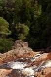 Australasian;Australia;Australian;cascade;cascades;creek;creeks;falls;Island-of-Tasmania;natural;nature;Rosebery;scene;scenic;State-of-Tasmania;Stilt-River-Falls;stream;streams;Tas;Tasmania;The-West;water;water-fall;water-falls;waterfall;waterfalls;West-Tasmania;Western-Tasmania;wet