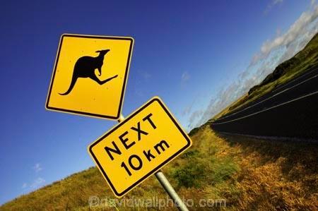 12-Apostles;australasia;Australia;australian;Great-Ocean-Road;kangaroo;Kangaroo-Warning-Sign;kangaroos;natural;nature;next-10-km;next-ten-km;Road;road-sign;road-signs;road_sign;road_signs;roads;roadsign;roadsigns;sign;signs;symbol;symbols;tranportation;transport;travel;Victoria;warn;warning;wildlife;yellow-black