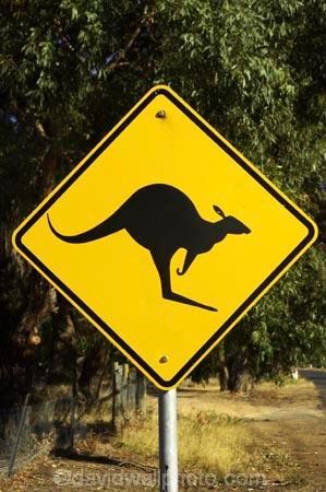 Ararat;australasia;Australia;australian;black;forest;forests;kangaroo;Kangaroo-Warning-Sign;kangaroos;natural;nature;Road;road-sign;road-signs;road_sign;road_signs;roads;roadsign;roadsigns;sign;signs;symbol;symbols;tranportation;transport;travel;Victoria;warn;yellow