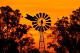 agriculature;agricultural;agriculture;australasia;australia;australian;bore-pump;bore-pumps;borepump;borepumps;break-of-day;country;countryside;dawn;dawning;daybreak;dusk;evening;farm;farming;farmland;farms;field;fields;first-light;morning;nightfall;orange;rural;silhouette;silhouettes;sky;sunrise;sunrises;sunset;sunsets;sunup;twilight;victoria;wind;wind-mill;wind-mills;wind_mill;wind_mills;windmill;windmills;windy
