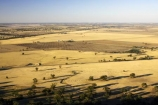 agricultural;agriculture;australasia;australia;australian;country;countryside;crop;crops;drought;droughts;dry;farm;farming;farmland;farms;field;fields;horsham;horticulture;meadow;meadows;mount-arapiles;mt-arapiles;mt.arapiles;natimuk;paddock;paddocks;parched;pasture;pastures;rural;victoria