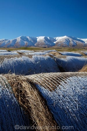 agricultural;agriculture;alp;alpine;alps;altitude;Aotearoa;Central-Otago;circular;cold;Coldness;country;countryside;extreme-weather;farm;farming;farmland;farms;field;fields;freeze;freezing;hay;hay-bale;hay-bales;high-altitude;Kakanui-Mountains;Kakanui-Mtns;Kyeburn;Maniototo;meadow;meadows;mount;mountain;mountain-peak;mountainous;mountains;mountainside;mt;N.Z.;New-Zealand;NZ;Otago;outdoor;outdoors;outside;paddock;paddocks;pasture;pastures;peak;peaks;Ranfurly;range;ranges;round;round-hay-bale;rural;S.I.;Scenic;Scenics;Season;Seasons;SI;snow;snow-capped;snow_capped;snowcapped;snowy;South-Is;South-Is.;South-Island;Sth-Is;straw;weather;White;winter;winter-feed;Wintertime;wintery;wintry