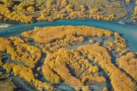aerial;aerial-photo;aerial-photograph;aerial-photographs;aerial-photography;aerial-photos;aerial-view;aerial-views;aerials;autuminal;autumn;autumn-colour;autumn-colours;Autumn-Willow-Trees;autumnal;bend;bends;blue-water;braided-river;braided-rivers;Central-Otago;clean-water;clear-water;Clutha-River;Clutha-River-Delta;color;colors;colour;colours;creek;creeks;deciduous;delta;deltas;fall;golden;meander;meandering;meandering-river;meandering-rivers;N.Z.;New-Zealand;NZ;Otago;pure-water;river;river-delta;river-deltas;rivers;S.I.;season;seasonal;seasons;SI;South-Is.;South-Island;stream;streams;tree;trees;Upper-Clutha;willow;willow-tree;willow-trees;willows;yellow