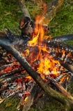 burn;burned;burning;burns;burnt;camp-fire;camp-fires;camp_fire;camp_fires;campfire;campfires;Central-Otago;cooking-fire;cooking-fires;danger;dangerous;fire;fires;flamable;flame;flames;flaming;heat;hot;N.Z.;New-Zealand;NZ;on-fire;orange;Otago;S.I.;SI;South-Is.;South-Island;wood;wood-fire;wood-fires;woodfire;woodfires