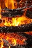 bonfire;bonfires;burn;burned;burning;burns;burnt;camp-fire;camp-fires;camp_fire;camp_fires;campfire;campfires;Central-Otago;cooking-fire;cooking-fires;danger;dangerous;fire;fires;flamable;flame;flames;flaming;heat;hot;N.Z.;New-Zealand;NZ;on-fire;orange;Otago;S.I.;SI;South-Is.;South-Island;wood;wood-fire;wood-fires;woodfire;woodfires