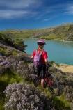 bicycle;bicycles;bike;bike-track;bike-tracks;bike-trail;bike-trails;bikes;Central-Otago;child;children;cycle;cycle-track;cycle-tracks;cycle-trail;cycle-trails;cycler;cyclers;cycles;cyclist;cyclists;girl;girls;lake;Lake-Roxburgh;lakes;mountain-bike;mountain-biker;mountain-bikers;mountain-bikes;mtn-bike;mtn-biker;mtn-bikers;mtn-bikes;N.Z.;New-Zealand;NZ;Otago;people;person;push-bike;push-bikes;push_bike;push_bikes;pushbike;pushbikes;Roxburgh;Roxburgh-Cycle-Track;Roxburgh-Cycle-Trail;Roxburgh-Gorge;Roxburgh-Gorge-Cycle-and-Walking-Trail;Roxburgh-Gorge-Cycle-Track;Roxburgh-Gorge-Cycle-Trail;Roxburgh-Gorge-Track;Roxburgh-Gorge-Trail;Roxburgh-Gorge-Walking-and-Cycle-Trail;S.I.;season;seasonal;seasons;SI;South-Is;South-Island;spring;spring-time;Sth-is;thyme;thyme-in-flower;tourism;tourist;tourists;violet;wild-thyme;young-girl;young-girls