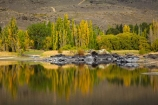Alexandra;autuminal;autumn;autumn-colour;autumn-colours;autumnal;Butchers-Dam;Butchers-Dam;calm;Central-Otago;color;colors;colour;colours;dam;dams;deciduous;fall;gold;golden;lake;lakes;leaf;leaves;N.Z.;New-Zealand;NZ;Otago;placid;quiet;reflected;reflection;reflections;S.I.;season;seasonal;seasons;serene;SI;smooth;South-Is;South-Island;Sth-Is;still;tranquil;tree;trees;water;yellow