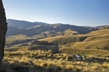 back-country;backcountry;Carrick-Range;Central-Otago;cross-country-bike;crosscountry-bike;dirt-bike;dirt-bikes;dirtbike;dirtbikes;Enduro-Bike;Enduro-Bikes;high-altitude;high-country;highcountry;highlands;kawasaki;Kawasaki-KLX400;KLX400;motor-bike;motor-bikes;motorbike;motorbikes;motorcycle;motorcycles;mountain;n.z.;Nevis-Road;nevis-valley;new-zealand;nz;off-road;Otago;range;ranges;remote;remoteness;S.I.;SI;South-Island;trail-bike;trail-bikes;trailbike;trailbikes;tussock;tussock-grass;tussocks;uplands