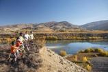 autuminal;autumn;autumn-colour;autumn-colours;autumnal;Bannockburn;bicycle;bicycles;bike;bikes;Biking-Track;Biking-Tracks;Carrick-Range;Central-Otago;color;colors;colour;colours;cycle;cycler;cyclers;cycles;cyclist;cyclists;deciduous;fall;families;family;lake;Lake-Dunstan;Lake-Dunstan-Track;Lake-Dunstan-Tracks;lakes;model-release;model-released;mountain-bike;mountain-biker;mountain-bikers;mountain-bikes;Mountain-Biking-Track;Mountain-Biking-Tracks;mtn-bike;mtn-biker;mtn-bikers;mtn-bikes;N.Z.;near-Cromwell;New-Zealand;NZ;Otago;people;person;persons;push-bike;push-bikes;push_bike;push_bikes;pushbike;pushbikes;S.I.;season;seasonal;seasons;SI;South-Is.;South-Island;tree;trees;Walking-Track;Walking-Tracks
