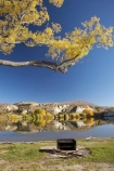 autuminal;autumn;autumn-colour;autumn-colours;autumnal;Bannockburn;Bannockburn-Inlet;barbeque;barbeques;calm;Central-Otago;color;colors;colour;colours;deciduous;fall;Kawarau-Arm;lake;Lake-Dunstan;lakes;N.Z.;New-Zealand;NZ;Otago;Picnic-Area;Picnic-Areas;Picnic-Ground;Picnic-Grounds;placid;quiet;reflection;reflections;Rest-Area;Rest-Areas;S.I.;season;seasonal;seasons;serene;SI;smooth;South-Is.;South-Island;still;tranquil;tree;trees;water;willow;willow-tree;willow-trees;willows
