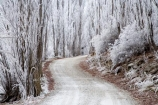 Alexandra;beautiful;Butchers-Dam;calm;calmness;Central-Otago;clean;clear;cold;Coldness;Color;Colour;countryside;Daytime;dusty;Exterior;freeze;freezing;freezing-fog;frost;Frosted;frosty;gravel-road;gravel-roads;high-country;hoar-frost;hoar-frosts;Hoarfrost;hoarfrosts;ice;ice-crystals;icy;icy-road;icy-roads;idyllic;Landscape;Landscapes;metal-road;metal-roads;metalled-road;metalled-roads;N.Z.;natural;Nature;new-zealand;NZ;Otago;Outdoor;Outdoors;Outside;peaceful;Peacefulness;phenomena;phenomenon;poplar;poplar-tree;poplar-trees;poplars;pure;Quiet;Quietness;rime;rime-ice;road;roads;rural;S.I.;Scenic;Scenics;Season;Seasons;SI;silence;slippery-road;slippery-roads;south-island;spectacular;stunning;tranquil;tranquility;tree;trees;view;water;weather;White;winter;winter-driving;winter-driving-conditions;winter-road;winter-roads;Wintertime;wintery;wintry